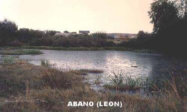 Abano