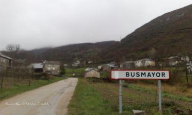 Busmayor