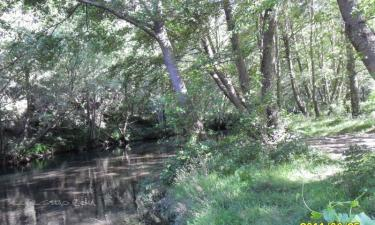 Espanillo:  Cruce de rios