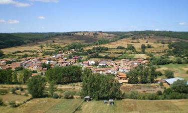 Garfín