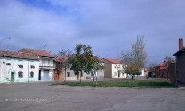 Villanueva de las Manzanas