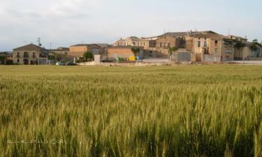 Palau de Tora: