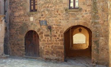 Torrefeta