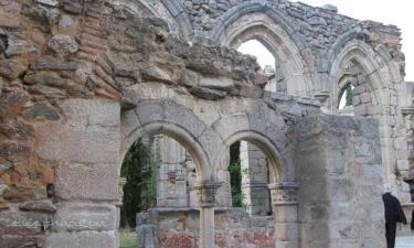 Pelayos de la Presa:  Por iniciativa de Alfonso VII su construcción se inicia en el s. XII para agrupar varias ermitas y consolidar la repoblación de la comarca tras la reconquista. En la fotoa se ven arcos románicos que aun quedan alrededor del claustro gótico.