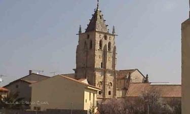 Torrelaguna: