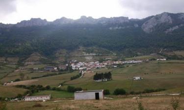 Lizarraga: