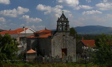 Maus de Salas: