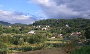 Pontedeva