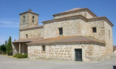 Negrilla de Palencia