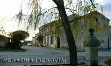 Vegafria: