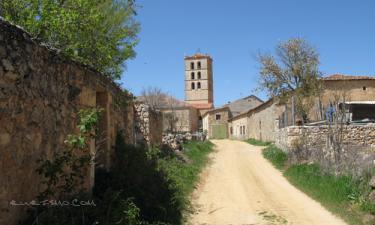 Pueblo Cedillo de la Torre