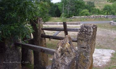 Santiuste de Pedraza:  potros de errar