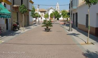 Cañada Rosal: