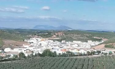 Corcoya