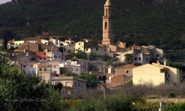 Albinyana