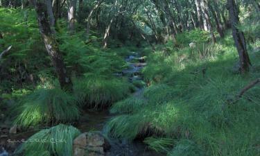 Navahermosa:  Subida a la Hoz de Carboneros