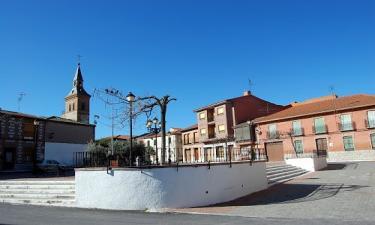 Portillo de Toledo