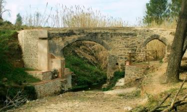 Montichelvo