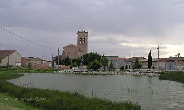 Bocigas