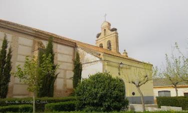 San Vicente del Palacio