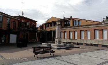 Viana de Cega