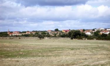 Argañín