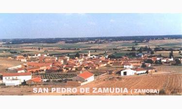 San Pedro de Zamudia: