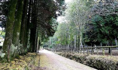 Parque de Cotorredondo y Lago de Castiñeiras