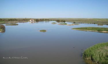 Listado alojamientos rurales en Reserva natural de Lagunas de Villafáfila