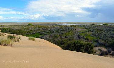 Listado alojamientos rurales en Las Marismas de Doñana