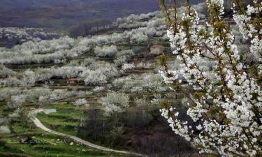 Ruta por el Valle del Jerte