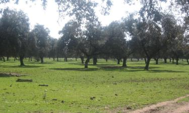 Listado alojamientos rurales en Parque Natural de la Sierra de Hornachuelos