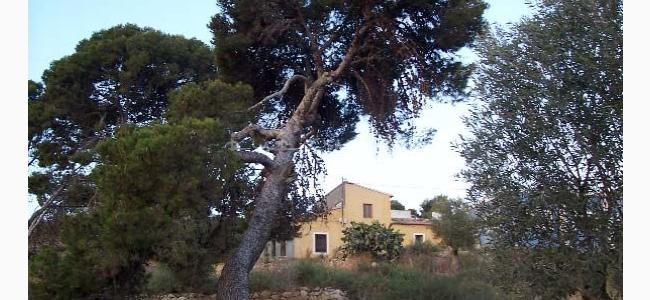 foto Tierra de Ifre
