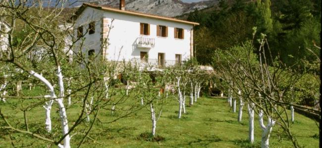 foto Casa Rural Mendiaxpe