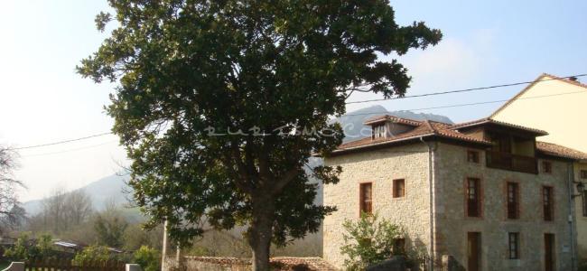 foto Casas de Aldea Las Rozas