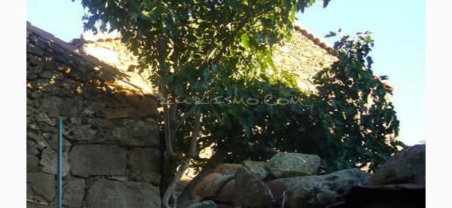 foto Casa Rural La Higuera