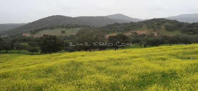foto Sierra de Tentudia
