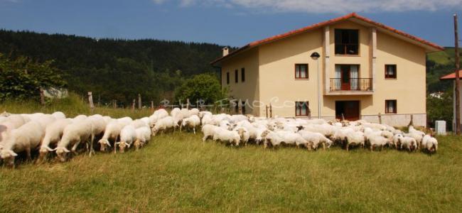 foto Casa Rural Ekoigoa
