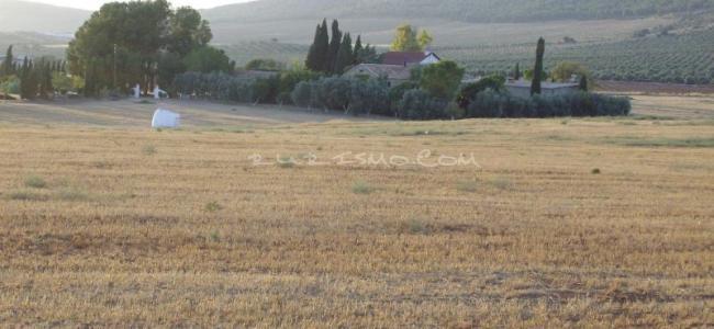 foto Casa  Rural  Cortijo Ferradores
