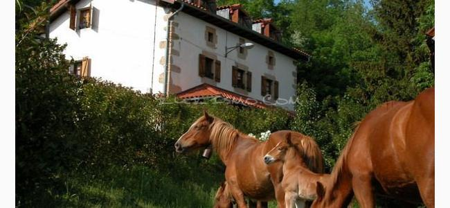 foto Casa Rural Agroturismo Mari Cruz