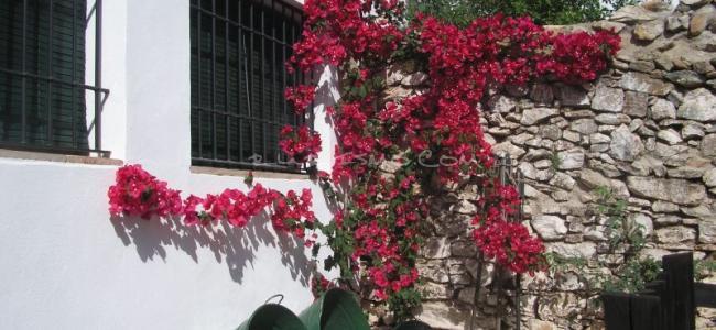 foto Casa Adriano