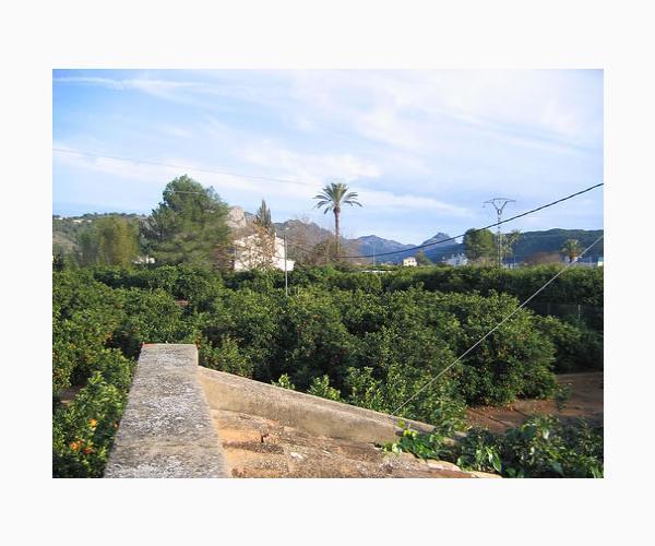 Fotos de alzira valencia rurismo - Hoteles en alzira valencia ...