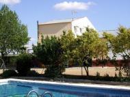 Doña Lucinda en Felipa, La (Albacete)