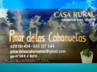 Pinar de las Cabañuelas en Villanueva de Duero (Valladolid)