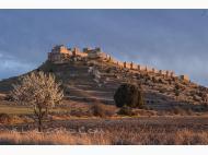 Castillo de Gormaz Gormaz
