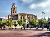 Iglesia Colegiata de San Antolín Medina del Campo