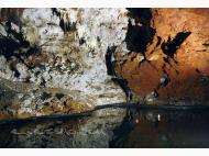 Cueva de El Soplao Rabago