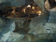 Cueva del Higuerón Rincón de la Victoria