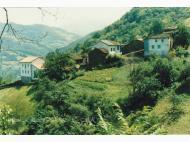 Oyanco
