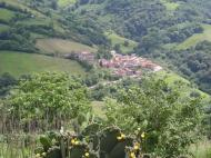 Pedroveya